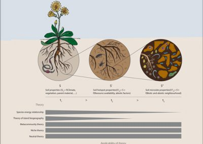 Soil of Biodiversity